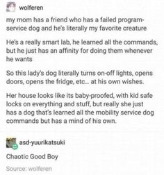 Funny Tumblr Stories, Tumblr Funny, Funny Memes, Funny Tumblr Text Posts, Funny Blogs, Dog Memes, Funny Cute, The Funny, Hilarious