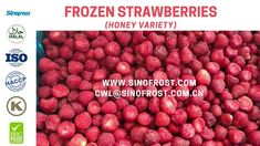 Sinofrost - IQF Whole Strawberries Honey Variety - Frozen Whole Strawber. Strawberry Puree, Raspberry, Frozen Strawberries, Honey, Fruit, China, Food, Eten, Raspberries
