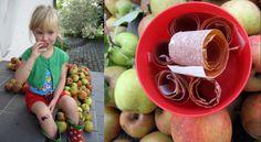 Appel snoepjes / Apple fruit leather