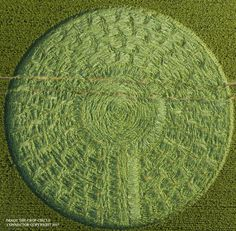 Crop Circle at West Kennett, Nr Avebury, Wiltshire. Reported 21st June 2017
