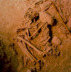 Bronze Age Iberia received fewer Steppe invaders than the rest of Europe