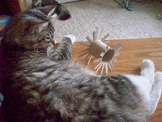 Zelfmaken: kattenspeeltjes