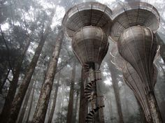 Amazing High-Tech Treehouses.
