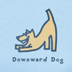 I want this shirt :)