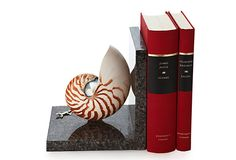 Black granite creates a stunning stage for the exquisite striped chamber nautilus shell mounted atop. A sterling silver lizard adds a touch of whimsy to this most striking bookend.Striped Nautilus Shell Bookend on OneKingsLane.com