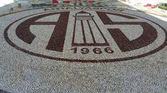 Artistic Pebble mozaik. Antalya spor logo. By Mehmet ışıklı Antalya Türkiye