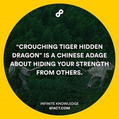 Sounds cool, huh? #8fact