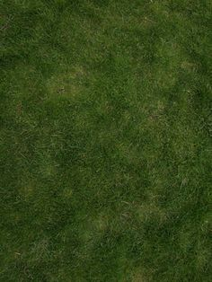 Photoshop Tutorial: How to create a tileable grass textures with the Pattern…