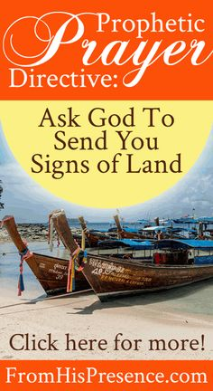 Prophetic Prayer Directive: Ask God to Send You Signs of Land | by Jamie Rohrbaugh | FromHisPresence.com