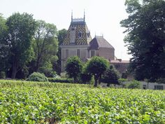 """Aloxe-Corton is dominated by the château with its patterned tiled roof  - one of the most photogenic in the Côte d'Or . The famous """"Montagne de Corton"""", a gently rounded hill situated above Aloxe-Corton (to the east), Ladoix-Serrigny (to the north) and Pernand-Vergelesses (to the west) attracts many."""