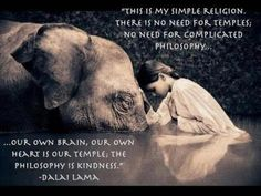 This is my simple religion.  There is no need for temples; no need for complicated philosophy... Our own brain, our own heart is our temple; the philosophy is kindness.—Dalai Lama