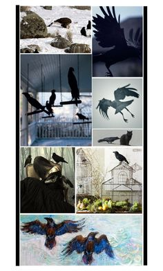 """""""Crows & Ravens"""" by fashionqueen76 ❤ liked on Polyvore featuring art"""