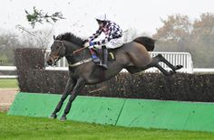 horse betting tips for Southwell racecourse http://racingprofits.net