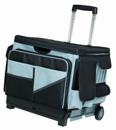 Something Like This For Curriculum Each Week Rolling Bags Teachers Teacher Cart