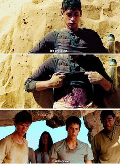That was the worst part of the Scorch Trials movie😭
