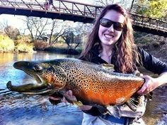 Kype jaw on this spawning brown trout.