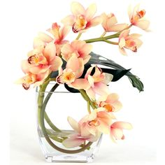Great Price on Waterlook  Silk Cream-Pink Orchids with Philo Leaf in a Glass Vase. Free Shipping.