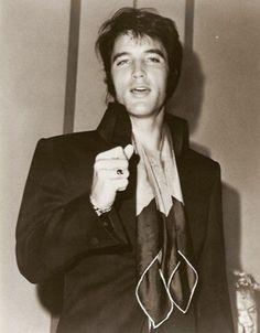 Elvis, Fabulous all around!