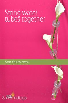 Fill water tube with water, cap off, insert stem and you're done. Clear acrylic water tubes, from Surroundings.com, allows flowers or stems to shine. String them together for hanging décor. Place several floral filled water tubes in a vase and invite your guests to take a flower. #watertubes #acrylicflowertubes Water Flowers, Fresh Flowers, Water Tube, Water Pictures, Flower Ball, Stems, Clear Acrylic, Invite, Flower Arrangements