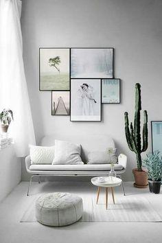 Cactus para decorar la sala