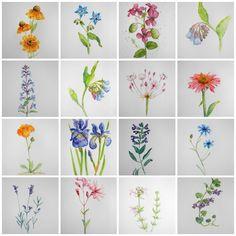 Blumen-Aquarelle arrangieren – Wer die Wahl hat, hat die Qual
