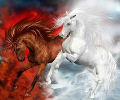 Beautiful Horses - abstract, animals, beautiful, beauty, colorful, colors, fantasy, fantasy horse, fantasy horses, horse, horses, in clouds, love, lovely, nice, Power, pretty, red, smoke, two, white, white horse