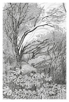 Postkarte Wald schöne detailierte Wald von TheresaGrieben auf Etsy