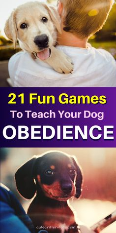 These 21 awesome games will help train your dog to obey your commands and stop unwanted barking, mouthing, and stop leash pulling so you can enjoy your dog walks together. #dogtraining #dogtrainingtips Awesome Games, Fun Games, Cute Puppies, Cute Dogs, Dog Minding, Endocannabinoid System, Dog Training Tips, Dog Walking, Mammals