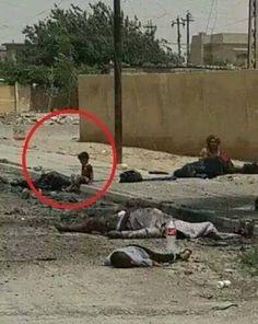Exponiendo los crímenes de Israel, en Gaza. ¿Algún judío chileno, apoya esto?