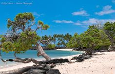 Mahai'ula Beach north of the Kona airport - thinking of this place always makes me smile!