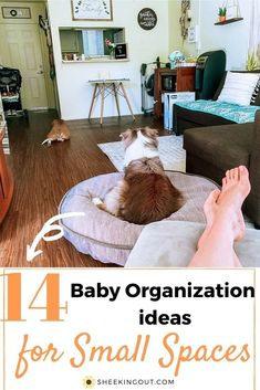 YES it is possible to have a baby in a small space! In this post, I will be going over 14 baby organization ideas and tips that will help optimize the space in your apartment to allow you to take care of your newborn in a one-bedroom apartment with ease. #havingababyinasmallspace #havingababyinaonebedroomapartment #havingababy #pregnant #nursery Pregnancy Stages, Pregnancy Humor, Parenting Styles, Parenting Hacks, Baby Playroom, Peaceful Parenting, One Bedroom Apartment, Baby Development, Baby Boy Nurseries