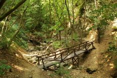 Van, aki a kilátókért rajong, van, akit a barlangok titokzatossága vonz, mások pedig azt állítják, hogy nincs izgalmasabb egy sziklafalakkal szegélyezett, mély völgybe vezető túránál. Nekik ajánlunk öt hazai szurdokot, ahol megcsodálhatják Magyarország legmagasabb vízesését, bebújhatnak az Ördöglikba, sőt akár... Budapest Hungary, Outdoor Furniture, Outdoor Decor, Garden Bridge, Grand Canyon, Outdoor Structures, Explore, Country, City