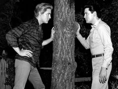 """Elvis in the Movies - Elvis Presley in the 1964 movie, """"Kissin' Cousins."""" The movie also featured Arthur O'Connell, Glenda Farrell, Jack Albertson, Pam Austin, Cynthia Pepper, Yvonne Craig and Maureen Reagan. (Metro-Goldwyn-Mayer)"""