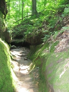 Shades State Park in #Indiana