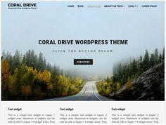 coral drive useful portfolio theme