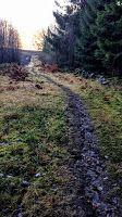 naturensdronning: Gikk en tur på stien