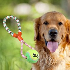 DoggieFever.com | In fashion dog clothes, dog collars and accessories, dog beds, healthy dog treats, dog toys, supplies and dog lover gifts