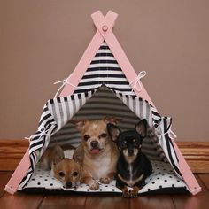 Chihuahuas in dog teepee by DogAndTeepee #DogBed