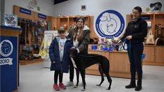 We've got that #FridayFeeling today thanks to 13-year-old Sophie. She visited our Brands Hatch centre this week to donate her Christmas AND birthday money to help the dogs and cats in our care.   Sophie came in along with her sister, mum and grandparents to make her donation and also got to meet lovely #Greyhound Shey.   We'd like to say a very big thank you to Sophie from all of us here at Battersea, particularly our dogs & cats. 🐶🐱  #RandomActsOfKindnessDay #cats #love #instagood…