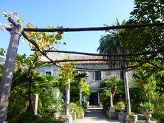 Arboretum Trsteno, Dubrovnik Croatia
