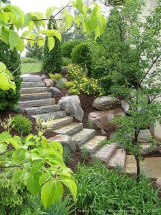 curved stone steps up the embankment