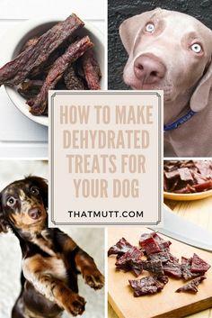 DIY healthy single ingredient dog treats!