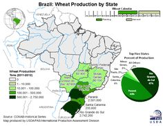Frumento, Brasile, aumentano le importazioni: si compra dagli States? - Materie Prime - Commoditiestrading