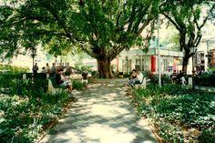 Praça Vilaboim. #sãopaulo #sp