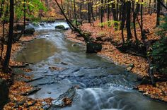 cuyahoga valley national park | cuyahoga valley national park slideshow add to cart
