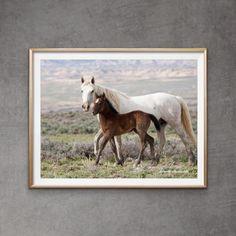 63 Horse Freedom In Adobe Town Ideas In 2021 Wild Horses Horses Wild
