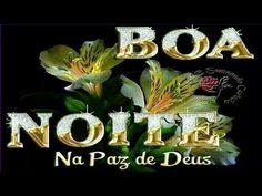 FALANDO DE VIDA!!: Boa noite na paz de Deus - Vídeo de boa noite - mensagem para whatsapp