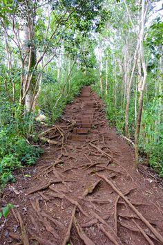 Maunawili Falls Hike - Oahu, Hawaii   Intentional Travelers
