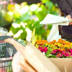 ………………………… 花と緑、そして庭がある素敵な暮らし。 ………………………… ザ・シーズンはエクステリア・ガーデン、インテリアリフォームの設計施工専門ショッ プです。 #エクステリア #ガーデン #exterior #garden #外構 #庭 #ザ・シーズン#The Season #thes eason #アウトドアリビング #outd oorliving #エクステリアデザイン #ガーデンデザイン #おしゃれ #セキスイデザ インワークス #sekisuidesignworks #緑 #緑の有る暮らし #世田谷マルシェ #plan ts #flower #greens #jap