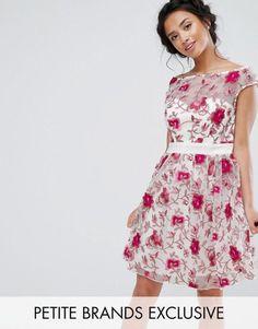 Little Mistress Petite Premium Embroidered Skater Dress. | dresslover.co.uk